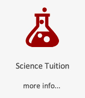 button science tuition